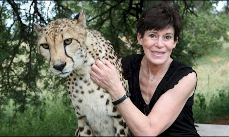 Lana writes about Ann Van Dyk at De Wildt Cheetah Research Centre for Saturday StarForty two years towards saving the Cheetah De Wildt Cheetah Research and Breeding Centre